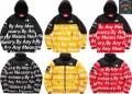 周りの目を引く シュプリームノースフェイスコラボ Supreme x The North Face 2017年秋コレクション ダウンジャケット3色可選